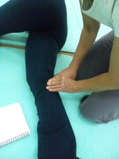 半膜様筋、膝窩筋.jpg