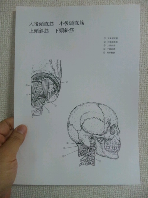 ボディワーカー 小川隆之のブログ