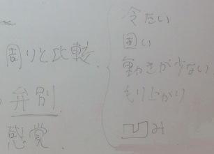 cul3.jpg
